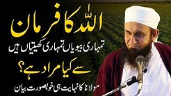 Tumhari Bivian Tumhari Khetian Hain - Very Important Bayan by Molana Tariq Jameel - 23 January 2021