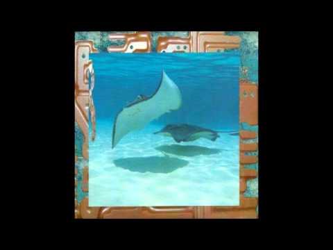 James Ferraro - Rerex 1 [Full Album]