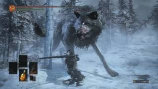 Ashes of Ariandel Review (Dark Souls 3 DLC)