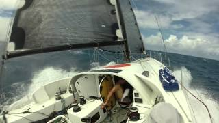 RORC Caribbean 600 - Sail for Belgium / Visit Brussels