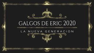 GALGOS DE ERIC 2020