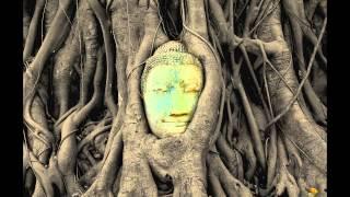Ganja Park - Paradigma (over Metal Fingers)