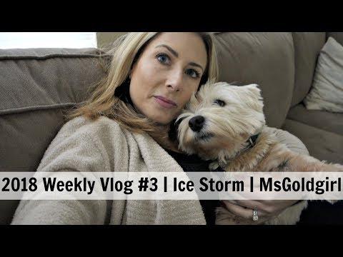 2018 Weekly Vlog #3 | Ice Storm | MsGoldgirl