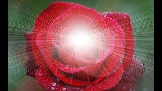 Sceau du Coeur
