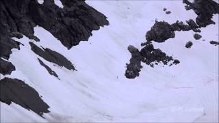 Possible Sasquatch Sighting outside Squamish, BC