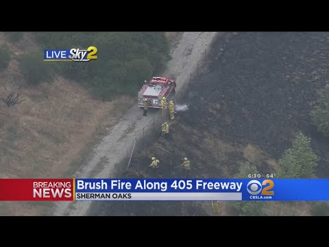 Tiny Brush Fire Along 405 Freeway In Sherman Oaks Causes Traffic Back-Up