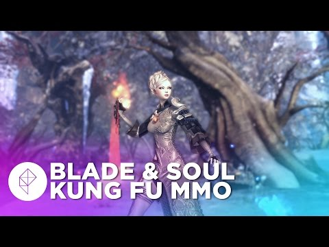 Martial arts MMO Blade & Soul coming to North America, here's your first look