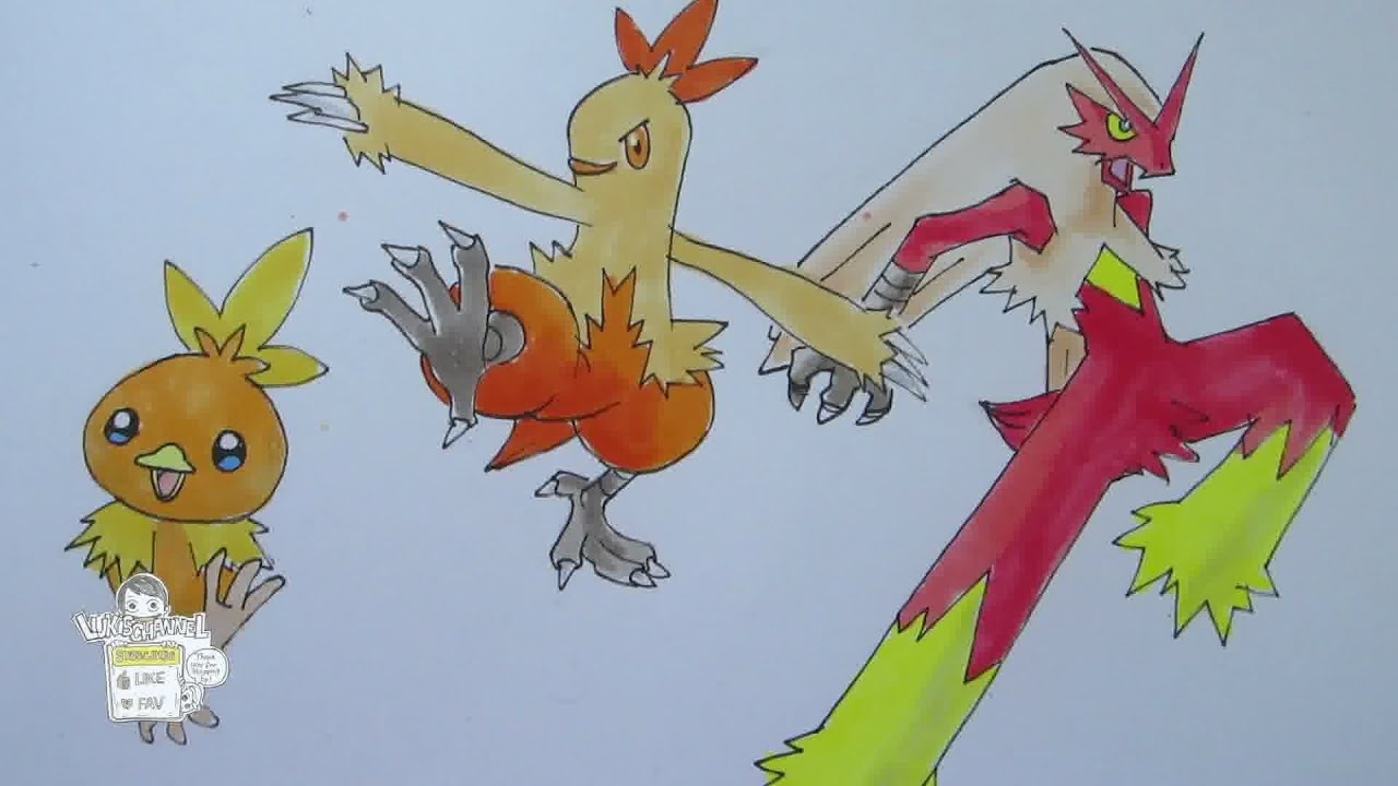 How to draw Pokemon No 255 Torchic No265 Combusken No257