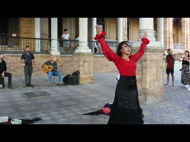 SPAIN - Flamenco demo plaza de España, Sevilla