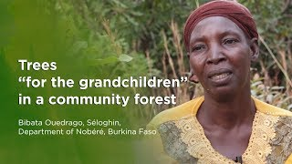 "Trees ""for the grandchildren"" in a community forest Bibata Ouedrago, Séloghin, Burkina Faso"