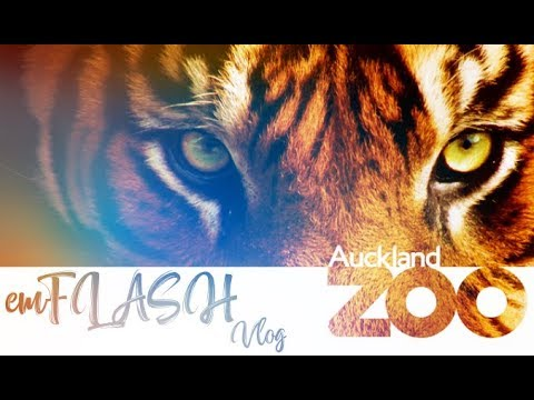 AUCKLAND ZOO | NEW ZEALAND | emFLASH Vlog