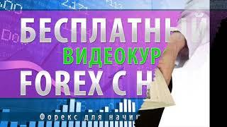 Торговля на форекс для начинающих видео | Заработок на форекс для начинающих
