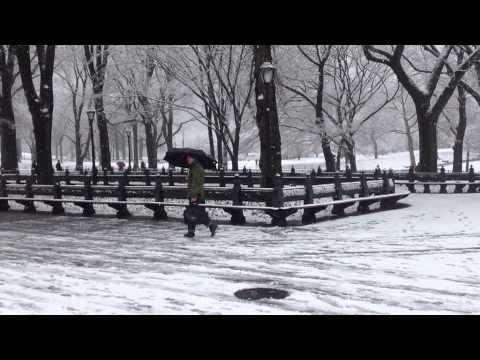 Snow Central Park New York, 2014, Christmas Holidays