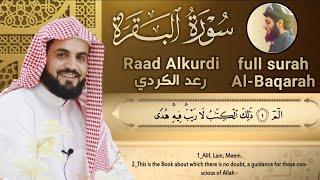 لأول مرة سورة البقرة كاملة للقارئ رعد الكردي |2020 full surah Al Baqara ـRaad Alkurdi