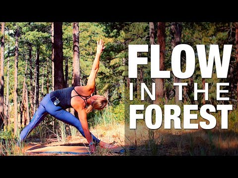 Flow in the Forest Yoga Class - Five Parks Yoga