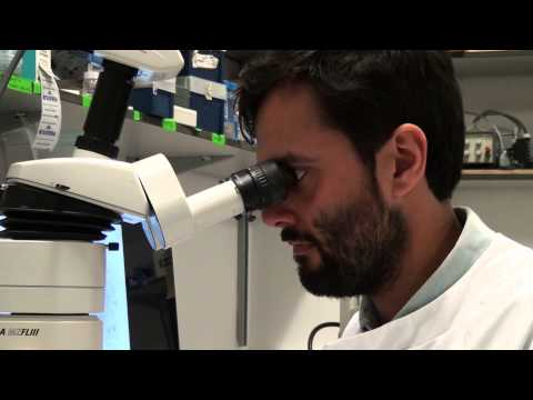 Cutting-edge: the science of tooth replacement at the Royal Society Summer Science Exhibition 2014