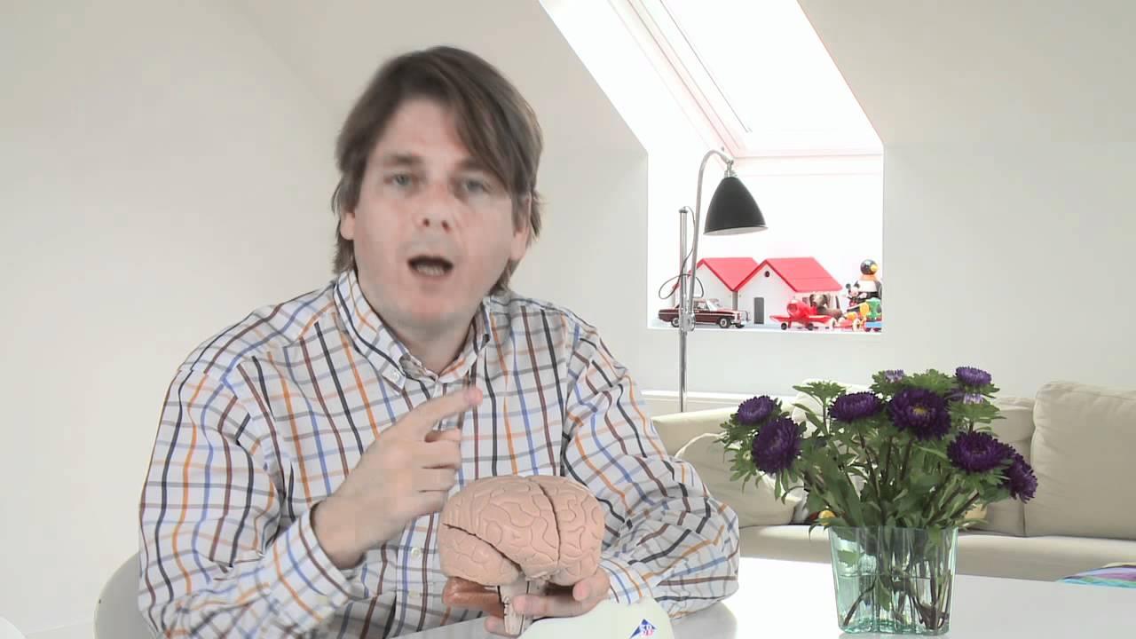 Peter Lund Madsen giver sit bud på om der er grund til at frygte at en hjerneskade kommer igen