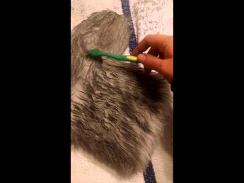 How to dye fake fur and achieve a rich color!