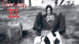 Watch Sebadoh Truly Great Thing video