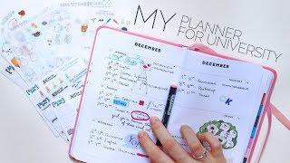 мой ежедневник | как я планирую время?