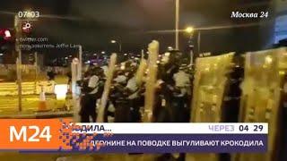 Смотреть видео Актуальные новости России и мира за 2 июля - Москва 24 онлайн