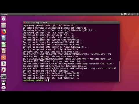 How To Enable SSH In Ubuntu 18.04 LTS / Ubuntu 16.04  (Install Openssh-server)