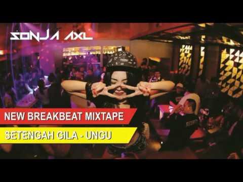 DJ BREAKBEAT 2018 MIXTAPE ((SETENGAH GILA - UNGU))