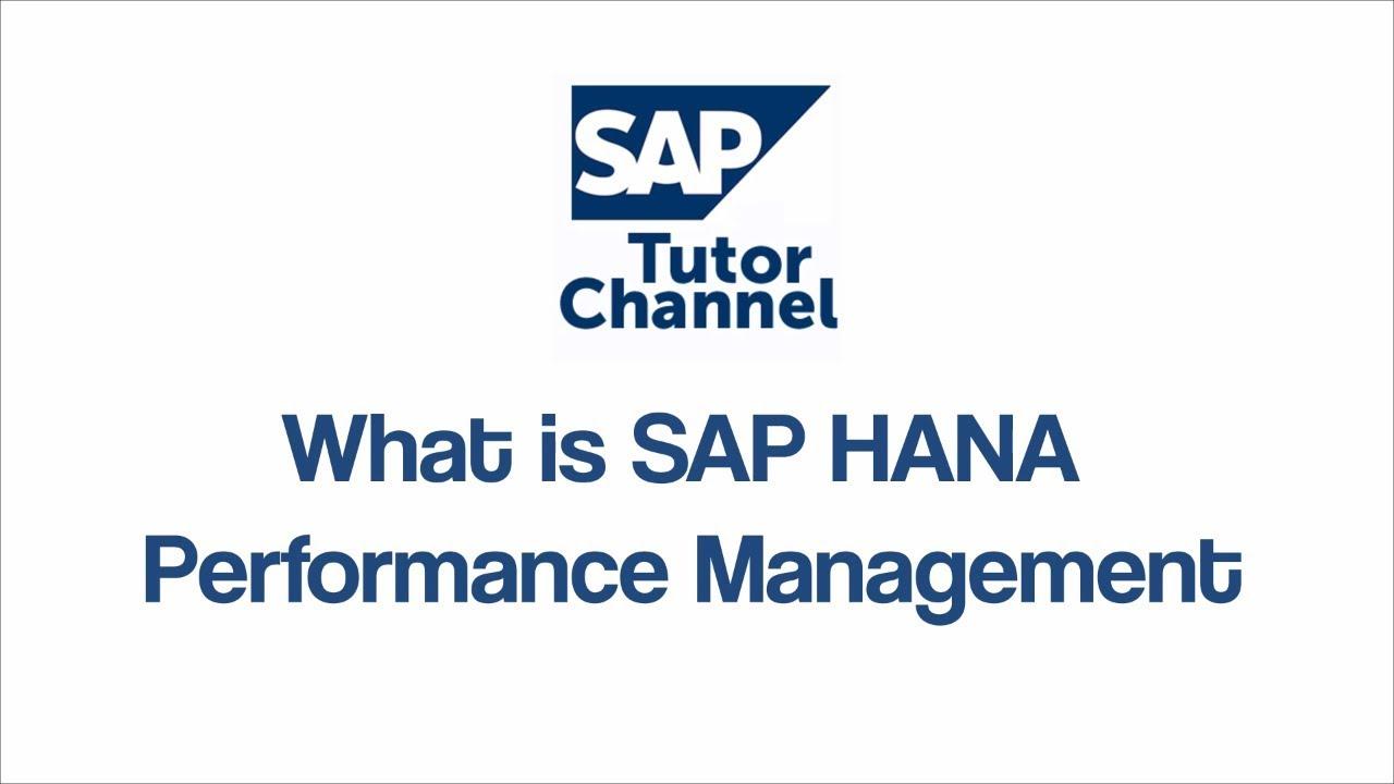What is SAP HANA Performance Management