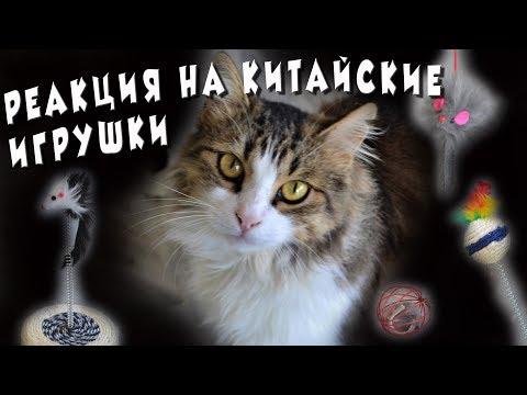 Реакция наших кошек на китайские игрушки 🐱 Никак не ожидали... 😱