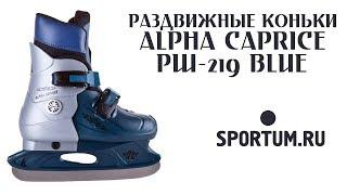 Раздвижные коньки ALPHA CAPRICE PW-219 Blue