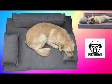 memory-foam-dog-bed-review-//-petbemo-orthopedic-couch-style-pet-bed