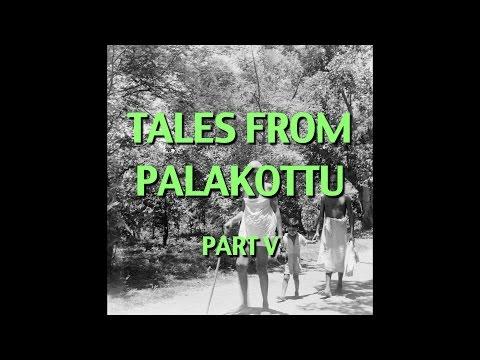 Talks on Sri Ramana Maharshi: Narrated by David Godman - Tales From Palakottu (Part V)