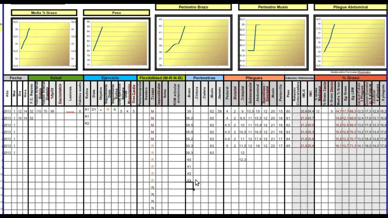 Seguimiento lite v0 8 plantilla programa para seguir for Gimnasio 9 y 57