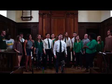 Wearin' of the Green (Traditional) - The Christopher Wren Singers