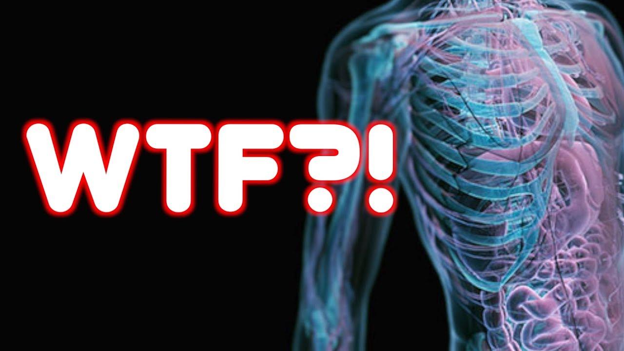 WEIRD HUMAN BODY FACTS! - YouTube