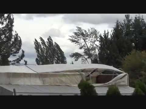 August 29,2015 Greater Vancouver, Windstorm Abbotsford, British Columbia