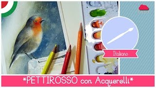 Acquerello Lezione 23: Come dipingere un Pettirosso nella Pioggia - Video Corso di Acquerello Online