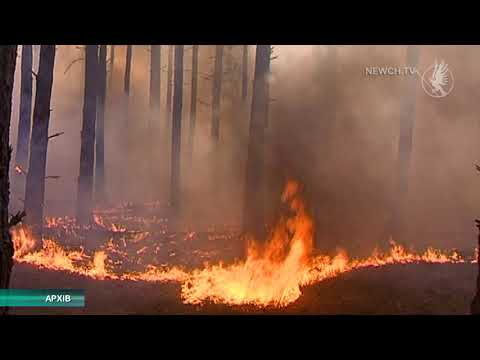 Телеканал Новий Чернігів: Очікується висока пожежна небезпека| Телеканал Новий Чернігів