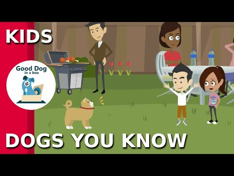 [DOGS YOU KNOW]: Be SAFE Dog Safety Video for Kids | Good Dog In A Box (2019)
