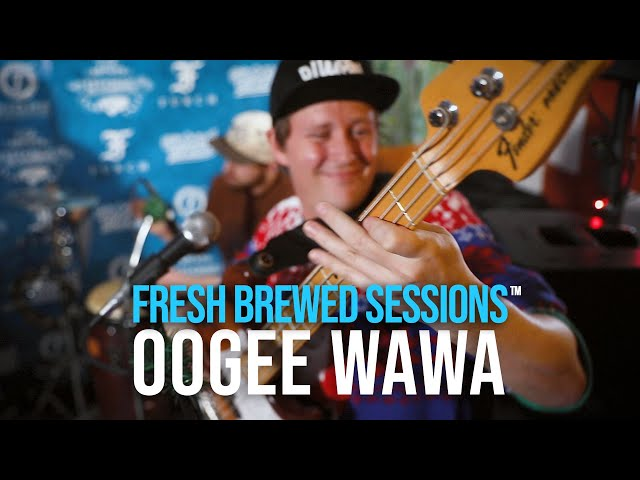 #acoustic #singersongwriter Oogee Wawa | Lion | Fresh Brewed Session