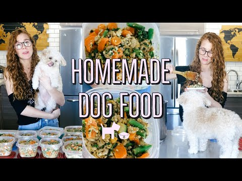 HOMEMADE + HEALTHY DOG FOOD RECIPE | COOKING FOR YOUR DOG