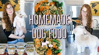 HOMEMADE + HEALTHY DOG FOOD RECIPE | COOKING FOR YOUR DOG🐶