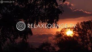 FENG SHUI  - Gesundheit, Spa & Wellness - Yoga Musik, Spirituelle & Anti-Stress Musik