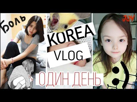 Один наш день в Южной Корее/ KOREA VLOG/
