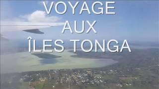 Voyage à la rencontre de l'Être véritable aux îles Tonga ?