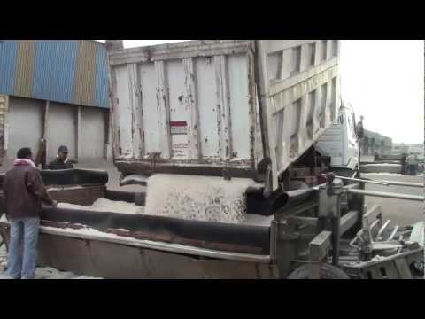 Stevedoring Egyptian Sea Salt - Anjen Global