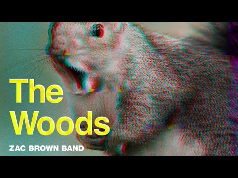 Zac Brown Band - The Woods (Official Music Video) | The Owl