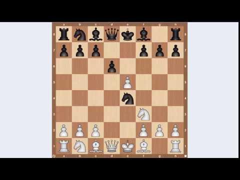 Шахматы защита филидора видеоурок