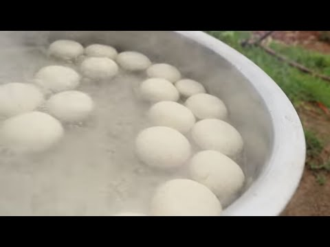 Bengali Rasgulla Recipe | Sponge Rasgulla Recipe in Hindi | Desi Kitchen