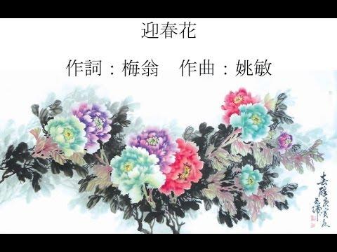 迎春花 (张露,经典新年歌;含歌词)